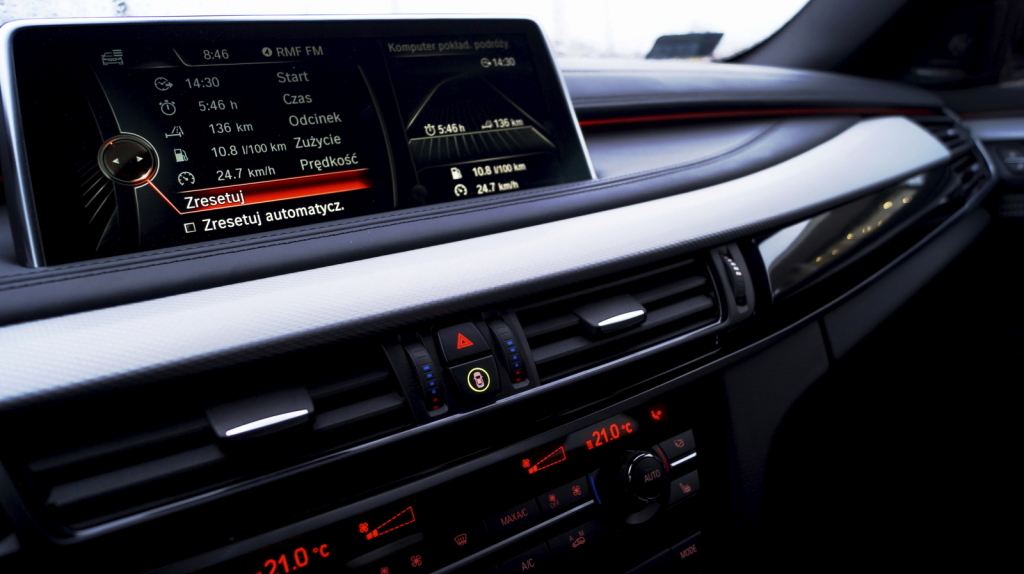 BMW X6 (49)