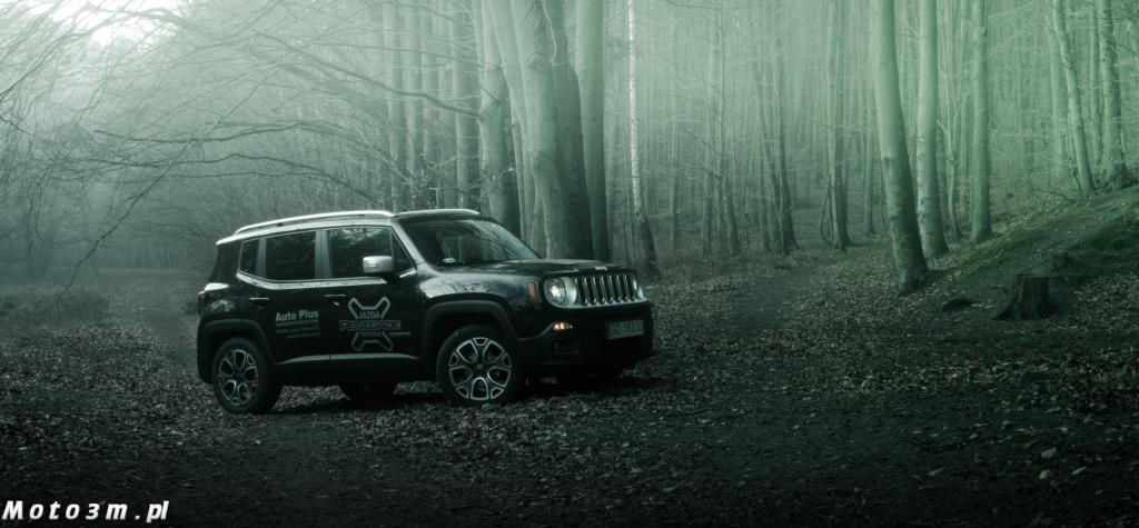 Jeep Renegade-03827