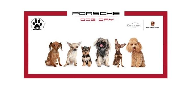 Porsche Dog Day