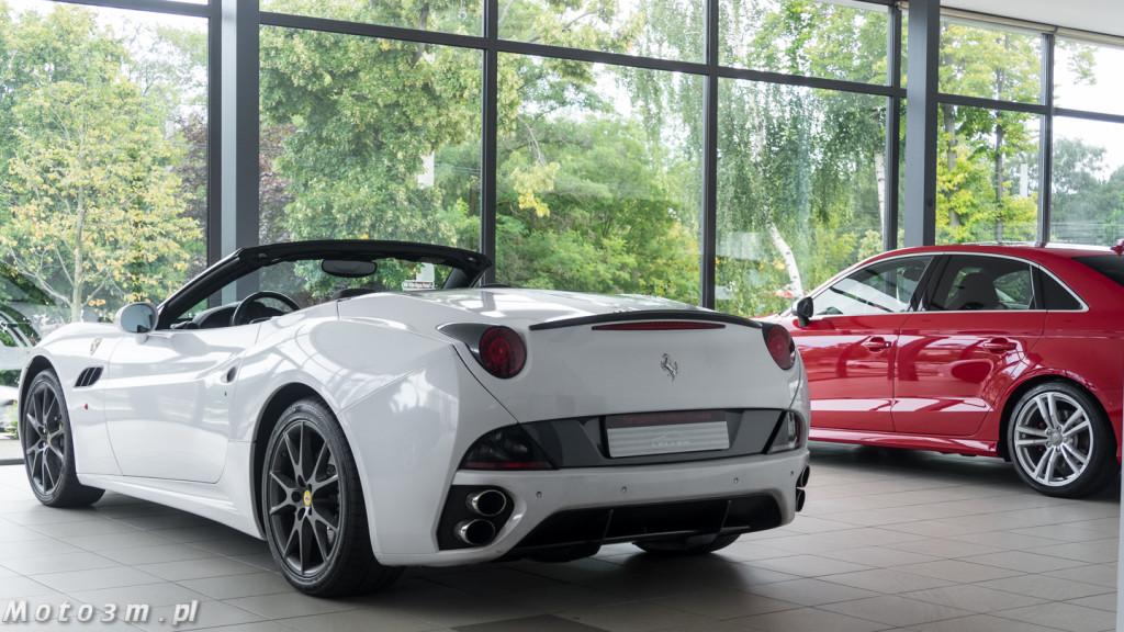 Porsche Approved Ferrari + Lamborghini-1210121