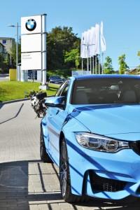 Fot. BMW MINI Zdunek (fb)