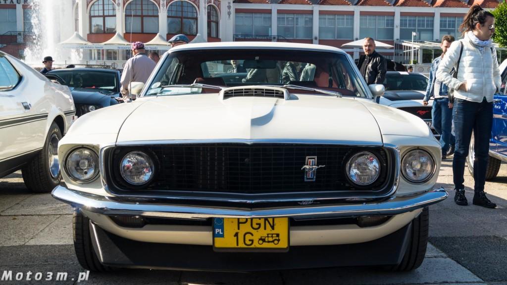 -Born to be free- - wystawa Mustangów w Sopocie -00096