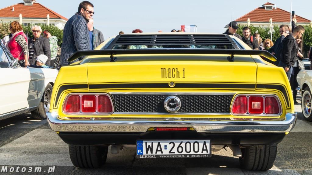 -Born to be free- - wystawa Mustangów w Sopocie -00101