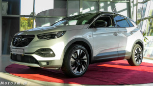 Opel Grandland X - Serwis Haller-1640189