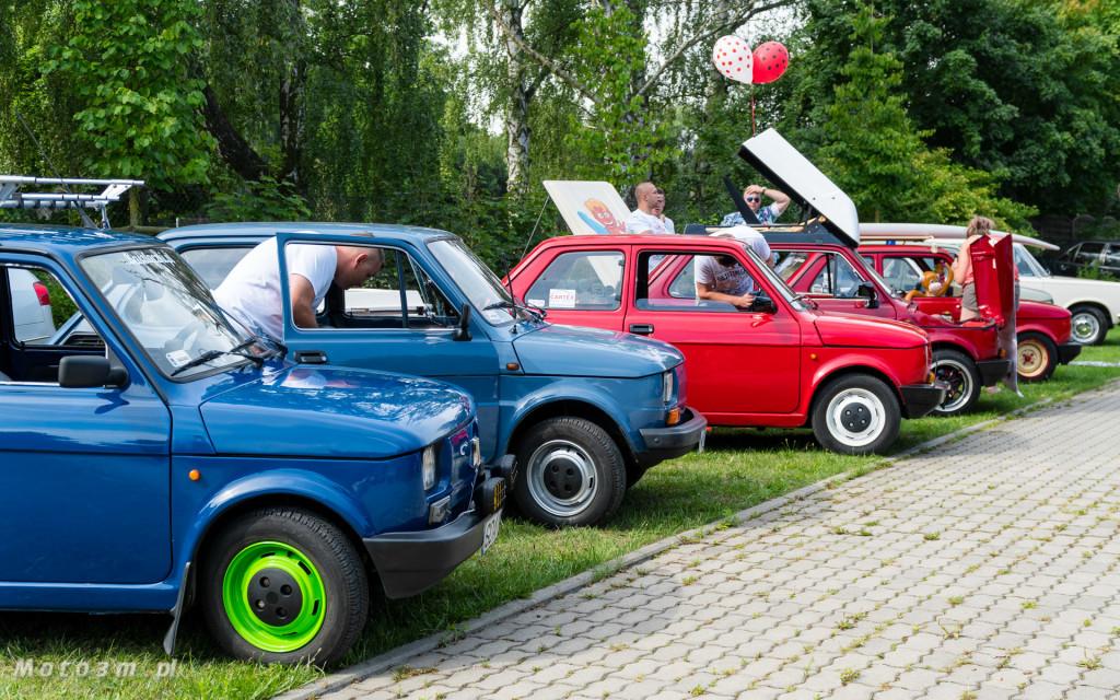 Moto Zoo 2018 - wystawa klasycznych samochodów w Gdańskim Ogrodzie zooologicznym-06919