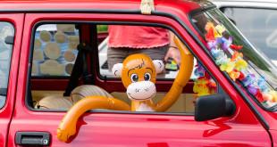Moto Zoo 2018 - wystawa klasycznych samochodów w Gdańskim Ogrodzie zooologicznym-06922