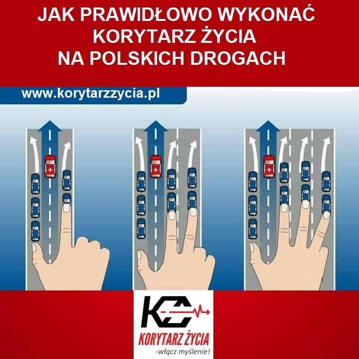 Fot. KorytarzZycia.pl